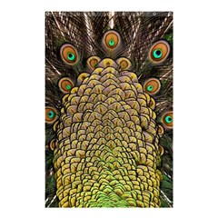 Peacock Feathers Wheel Plumage Shower Curtain 48  X 72  (small)