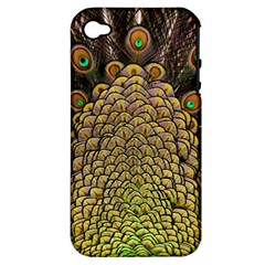 Peacock Feathers Wheel Plumage Apple Iphone 4/4s Hardshell Case (pc+silicone)