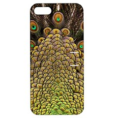 Peacock Feathers Wheel Plumage Apple Iphone 5 Hardshell Case With Stand