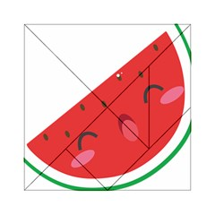 Watermelon Red Network Fruit Juicy Acrylic Tangram Puzzle (6  X 6 )