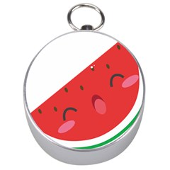 Watermelon Red Network Fruit Juicy Silver Compasses