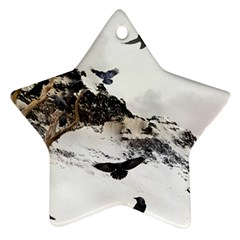 Birds Crows Black Ravens Wing Ornament (star)