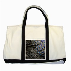 Feather Bird Bird Feather Nature Two Tone Tote Bag