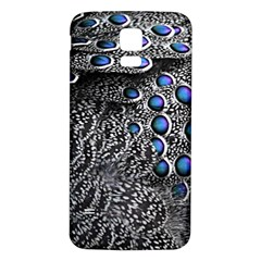 Feather Bird Bird Feather Nature Samsung Galaxy S5 Back Case (white)
