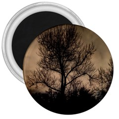 Tree Bushes Black Nature Landscape 3  Magnets