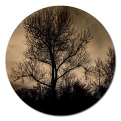 Tree Bushes Black Nature Landscape Magnet 5  (round) by BangZart