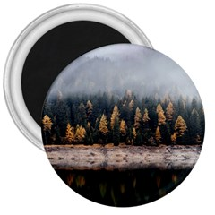 Trees Plants Nature Forests Lake 3  Magnets