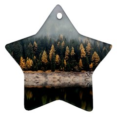 Trees Plants Nature Forests Lake Ornament (star)