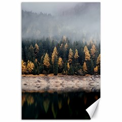 Trees Plants Nature Forests Lake Canvas 24  X 36