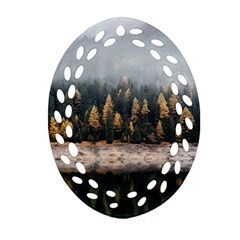 Trees Plants Nature Forests Lake Oval Filigree Ornament (two Sides)