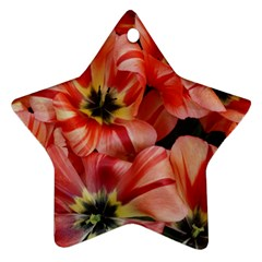 Tulips Flowers Spring Ornament (star)