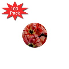Tulips Flowers Spring 1  Mini Magnets (100 Pack)