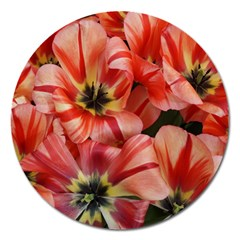 Tulips Flowers Spring Magnet 5  (round)