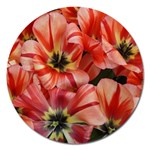 Tulips Flowers Spring Magnet 5  (Round) Front