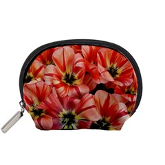 Tulips Flowers Spring Accessory Pouches (small)