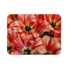 Tulips Flowers Spring Double Sided Flano Blanket (mini)