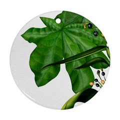 Plant Berry Leaves Green Flower Ornament (round)