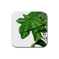 Plant Berry Leaves Green Flower Rubber Square Coaster (4 Pack)