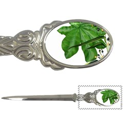 Plant Berry Leaves Green Flower Letter Openers by BangZart