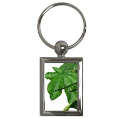 Plant Berry Leaves Green Flower Key Chains (rectangle)