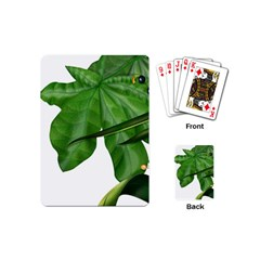 Plant Berry Leaves Green Flower Playing Cards (mini)