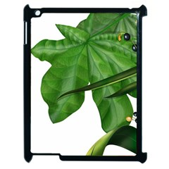 Plant Berry Leaves Green Flower Apple Ipad 2 Case (black) by BangZart