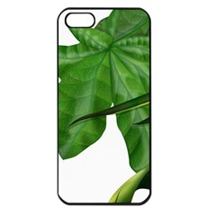 Plant Berry Leaves Green Flower Apple Iphone 5 Seamless Case (black) by BangZart