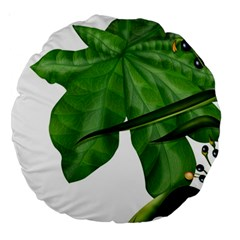 Plant Berry Leaves Green Flower Large 18  Premium Round Cushions
