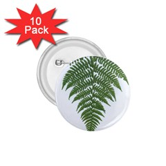 Boating Nature Green Autumn 1 75  Buttons (10 Pack)