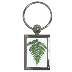 Boating Nature Green Autumn Key Chains (rectangle)  by BangZart