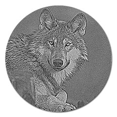 Wolf Forest Animals Magnet 5  (round) by BangZart
