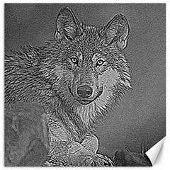 Wolf Forest Animals Canvas 16  X 16