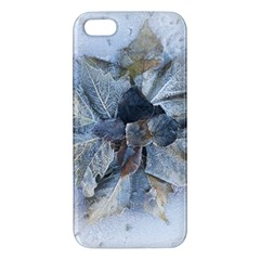 Winter Frost Ice Sheet Leaves Apple Iphone 5 Premium Hardshell Case
