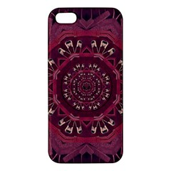 Leather And Love In A Safe Environment Iphone 5s/ Se Premium Hardshell Case by pepitasart