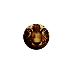Cat Tiger Animal Wildlife Wild 1  Mini Magnets by Celenk
