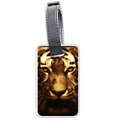 Cat Tiger Animal Wildlife Wild Luggage Tags (two Sides)