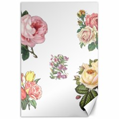 Rose Flowers Campanula Bellflower Canvas 24  X 36  by Celenk