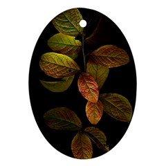 Autumn Leaves Foliage Ornament (oval) by Celenk