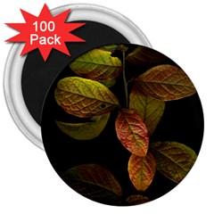 Autumn Leaves Foliage 3  Magnets (100 Pack) by Celenk