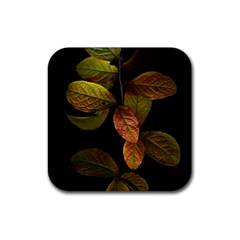 Autumn Leaves Foliage Rubber Coaster (square)  by Celenk
