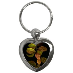 Autumn Leaves Foliage Key Chains (heart)  by Celenk