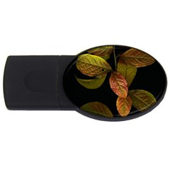 Autumn Leaves Foliage Usb Flash Drive Oval (4 Gb) by Celenk
