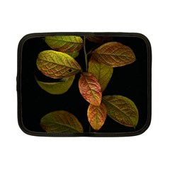 Autumn Leaves Foliage Netbook Case (small)  by Celenk