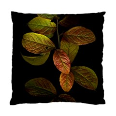 Autumn Leaves Foliage Standard Cushion Case (one Side) by Celenk