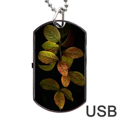 Autumn Leaves Foliage Dog Tag Usb Flash (one Side) by Celenk