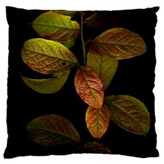 Autumn Leaves Foliage Large Cushion Case (one Side) by Celenk