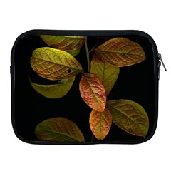 Autumn Leaves Foliage Apple Ipad 2/3/4 Zipper Cases by Celenk