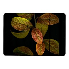 Autumn Leaves Foliage Samsung Galaxy Tab Pro 10 1  Flip Case by Celenk