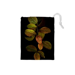 Autumn Leaves Foliage Drawstring Pouches (small)  by Celenk