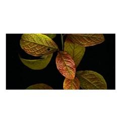 Autumn Leaves Foliage Satin Shawl by Celenk
